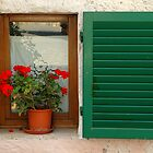 Window, Tuscany, Italy by fauselr