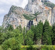 Yosemite Vally by Reese Ferrier