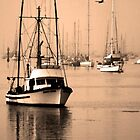 Dawn at Morro Bay by Paul Bailey