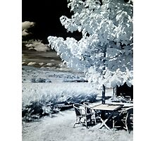 Summer by the vineyards... Photographic Print