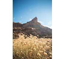 Warming Up – Capitol Reef National Park, Utah Photographic Print