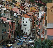 Riomaggiore, Cinque Terre, Italy by col233