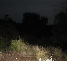 Stormy night by Eddie Johnson
