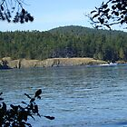 Deception Pass Washington by Dorthy Ottaway