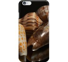 Florida Seashells iPhone Case/Skin