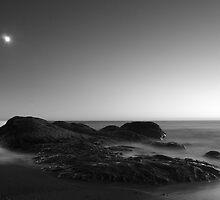 moonrock by Terry Breedlove