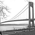 Verrazano-Narrows Bridge by Caren Grant