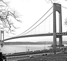 Verrazano-Narrows Bridge by Caren