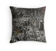 A Cemetary Drive Throw Pillow
