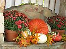 ~Autumn Design~ by NatureGreeting Cards ©ccwri