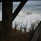 under the boardwalk by Geri Bragg