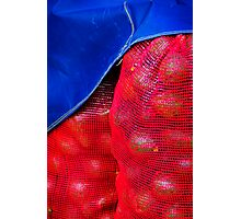 Aguacate Photographic Print