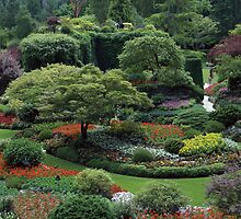 GardenViews by Richard  Leon