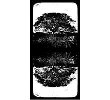 Traces Photographic Print
