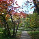 Autumn Pond by Glenn Esau