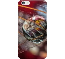 Witness to Love Past iPhone Case/Skin
