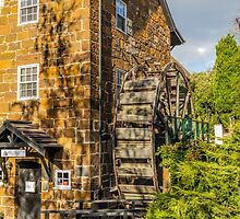 Penny Royal Water Mill, Launceston, Tasmania, Australia by Elaine Teague