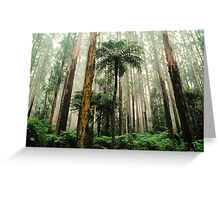 Mountain Ash Forest. Greeting Card