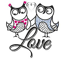 Owls love Photographic Print