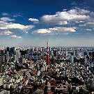 Tokyo skyline from the Mori Tower, Roppongi by Alfie Goodrich