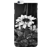 Day of the Sunflowers iPhone Case/Skin