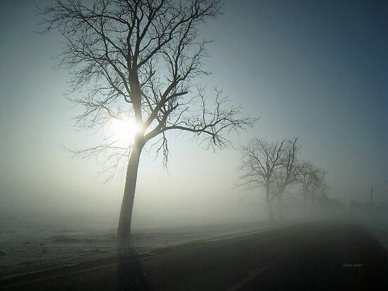 Winter Fog by Donna R. Carter