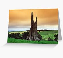 Where giants once stood. Greeting Card