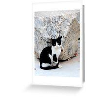 Grecian Kitty Greeting Card