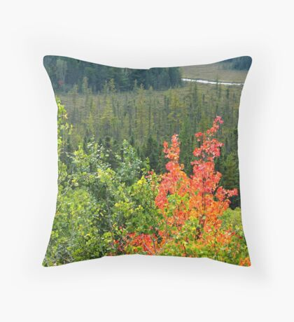 Algonquin Changing Throw Pillow