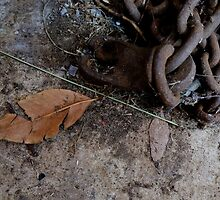 Unswept by kate18a