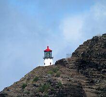 Lighthouse by Stephanie  Newbold