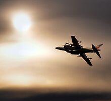 Harrier Sunset  by J Biggadike