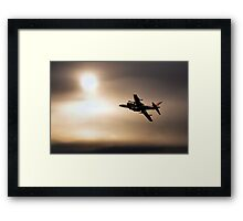 Harrier Sunset  Framed Print