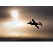 Harrier Sunset  Photographic Print