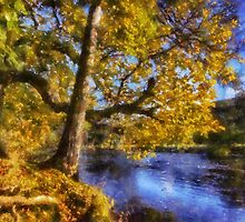 Autumn River by Ian Mitchell