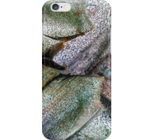 Painted Palm Trunk iPhone Case/Skin