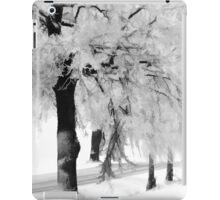 When the snow falls iPad Case/Skin