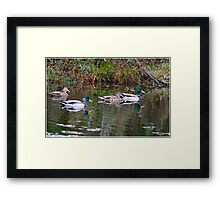 Party Of Four Framed Print