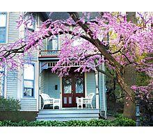 Blossom Season Photographic Print
