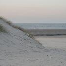 Dune by Alex Chartonas