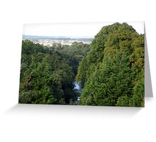 above the tree tops Greeting Card