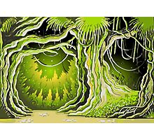 Magic Tale Forest Background Photographic Print