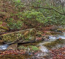 Boggs Creek by Bernd F. Laeschke