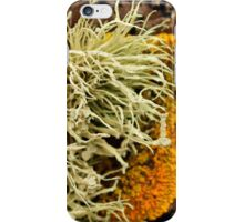 Lichen and Seaweed iPhone Case/Skin