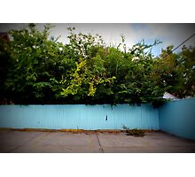 The Blue Fence Photographic Print