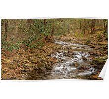 DeSoto Falls – scenic hikes along Frogtown Creek Poster