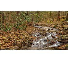 DeSoto Falls – scenic hikes along Frogtown Creek Photographic Print