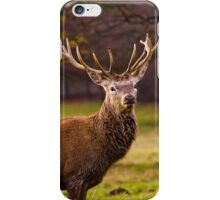 Red Deer on the Move iPhone Case/Skin