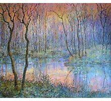 Wetlands at Sunset Photographic Print