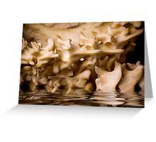 Water Bones Greeting Card